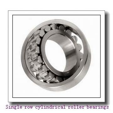 NJ248M Single row cylindrical roller bearings