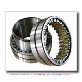500arXs2443 568rXs2443 four-row cylindrical roller Bearing inner ring outer assembly