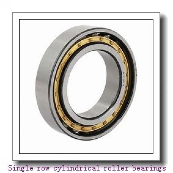 NF19/600 Single row cylindrical roller bearings #2 image